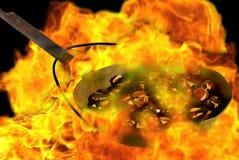 Castagne sul fuoco Fotografie Stock