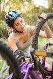 Castana atletico controllando il suo mountain bike Immagini Stock