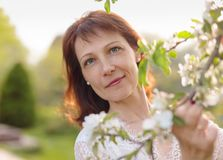 Castana attraente in un vestito bianco vicino di melo di fioritura immagini stock