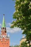 Castanea каштана зацветает в предпосылке башни троицы Москвы Кремля Стоковые Изображения