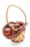 Castanha com a crosta na cesta de vime no fundo branco Fotos de Stock