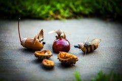 Castanha feito a mão da floresta da bolota da abelha do rato Fotografia de Stock