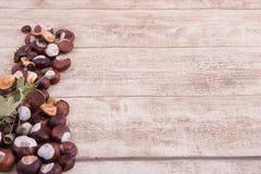 Castanhas e bolotas no backgtound de madeira com espaço para próprio tex Imagem de Stock