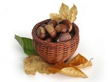Castanhas em uma cesta com folhas de outono Foto de Stock Royalty Free