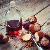 Castanhas, faca e garrafa com tintura na tabela de madeira, herba Fotografia de Stock Royalty Free