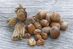 Castanhas, fruto da árvore de castanhas & x28; Sativa& x29 do Castanea; Imagem de Stock Royalty Free