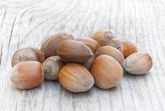 Castanhas, fruto da árvore de castanhas & x28; Sativa& x29 do Castanea; Fotografia de Stock Royalty Free