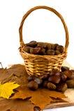 Castanhas na cesta Foto de Stock Royalty Free