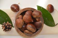 Castanhas orgânicas cruas de Brown em uma bacia Imagem de Stock Royalty Free