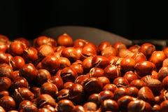 Castanhas Roasted, Imagem de Stock Royalty Free