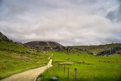 Castel小山,新西兰 免版税图库摄影
