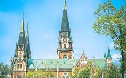 Castel в Львове Стоковые Фотографии RF