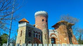 Castel de Tepes à Bucarest images libres de droits