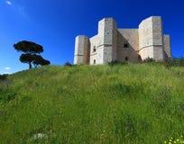 castel Del Monte obrazy stock