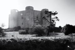 castel del monte 库存图片