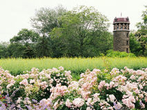 Castel i trädgården Arkivfoton