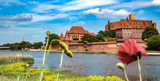 The castel in Malbork, Marienburg.Teutonic knights architecture in Poland.  Ordensritter and the Ordensritterstaat. The castel in Malbork, Marienburg as seen Stock Image