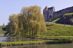 Castel and pond of Falaise in France Stock Photography