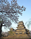 castel sławny japoński Matsumoto punktu turysta Obraz Royalty Free