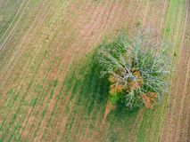 Castel Sant Elia Luchtmening van het platteland in de provincie stock afbeeldingen