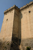 Castel of Tarascon Royalty Free Stock Photos