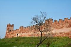 Castelfranco Veneto, Treviso provincie Stock Afbeeldingen