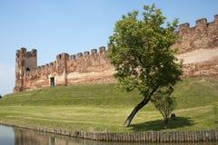Castelfranco Veneto (TrevisoItaly): Ancient walls Royalty Free Stock Photography