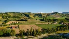 Castell'Arquato vineyards panorama Royalty Free Stock Image