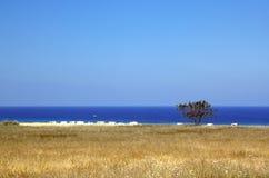 Castellammare Del Golfo stockfoto
