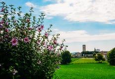 Castellaro Lagusello, Mantova, Italie photographie stock libre de droits