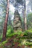 Castellated насыпь в лесе положения Стоковая Фотография RF
