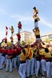 Castellers 4*7 Stockbild