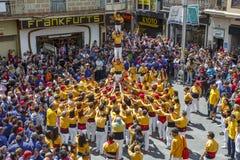 Castellers Barcellona 2013 Immagini Stock