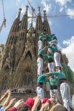 Castellers Barcelona  2013 Royalty Free Stock Photo