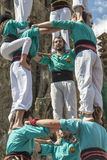 Castellers Barcelona  2013 Royalty Free Stock Photography