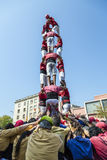 Castellers do a Castell or Human Tower, typical  in Catalonia. Stock Photos