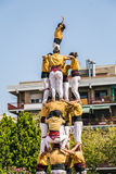 Castellers do a Castell or Human Tower, typical  in Catalonia. Stock Image