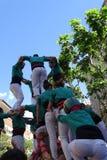 Castellers mänskligt torn från Catalonia, Spanien Royaltyfria Foton