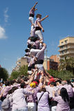 Castellers of Terrassa Royalty Free Stock Images