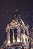 Castelli con i rami alla notte nell'inverno Immagine Stock