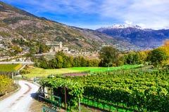 Castelli e wineyards del ` Aosta di Valle d Castello Reale di Sarre, Immagini Stock