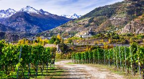 Castelli e wineyards del ` Aosta di Valle d con la montagna scenica delle alpi Immagini Stock Libere da Diritti