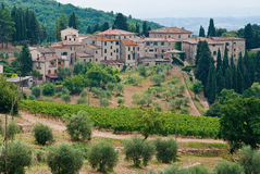 Castellina in chianti, italy. View of olive groves, vineyards and castellina of chianti, italy stock image