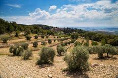 Castellina in chianty royalty-vrije stock afbeelding