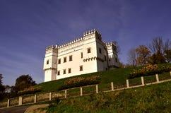 Castello Immagine Stock