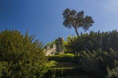 Castello Fotografia Stock Libera da Diritti