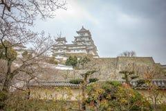 Castello bianco dell'egretta in primavera fotografie stock libere da diritti