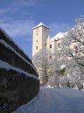 Castello Bitov, Repubblica ceca, Europa fotografia stock libera da diritti