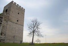 Castello che esiste dal tempo bizantino a Costantinopoli Fotografie Stock Libere da Diritti