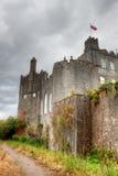 Castello in Co.Offaly - Irlanda del birr. Fotografie Stock Libere da Diritti